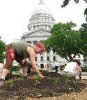 Community Groundworks planting