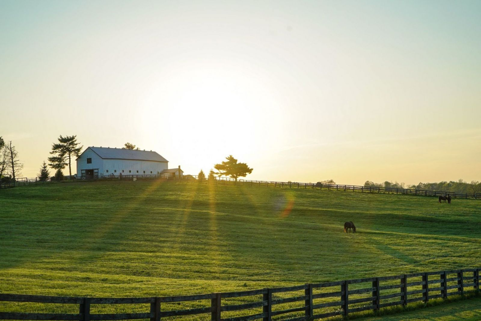 sun setting over green grass and farmland fence in foreground and barn in background