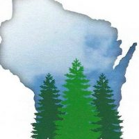 wisconsin state outline with trees in front